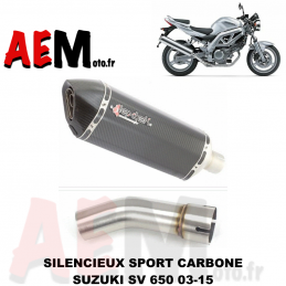 Silencieux sport carbone...